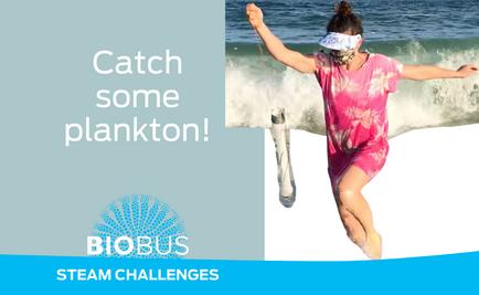 STEAM Challenge: Catch some plankton!