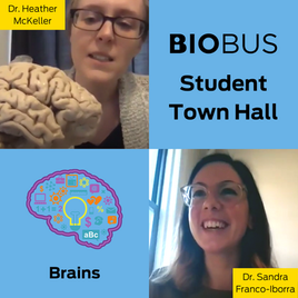 Student Town Hall: Brains