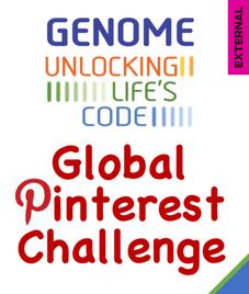 Genome: Unlocking Life's Code - Global Pinterest Challenge