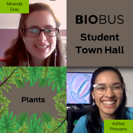 Student Town Hall: Plants