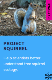Citizen Science: Project Squirrel