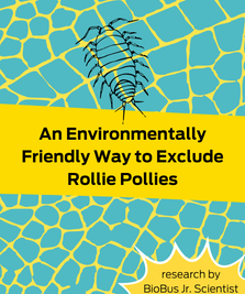 Intern Research: An Environmentally Friendly Way to Exclude Rollie Pollies
