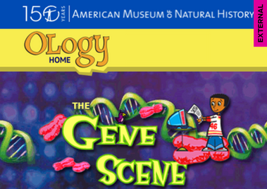 AMNH - Ology: Genetics