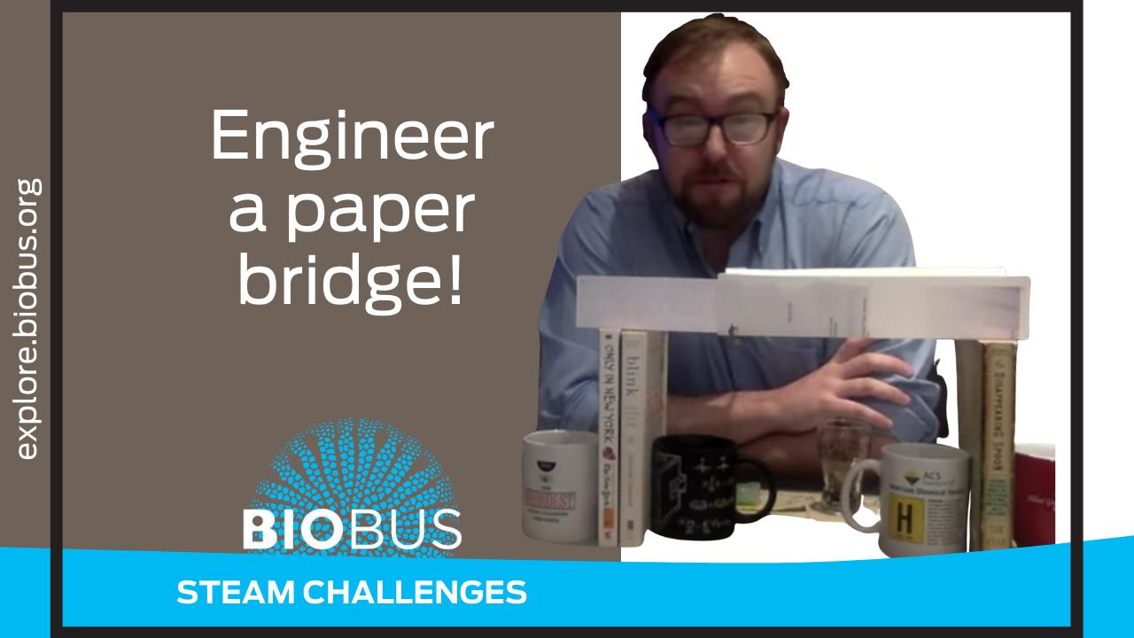 Engineer a paper bridge!