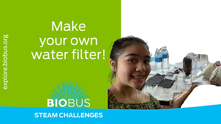 Make your own water filter!