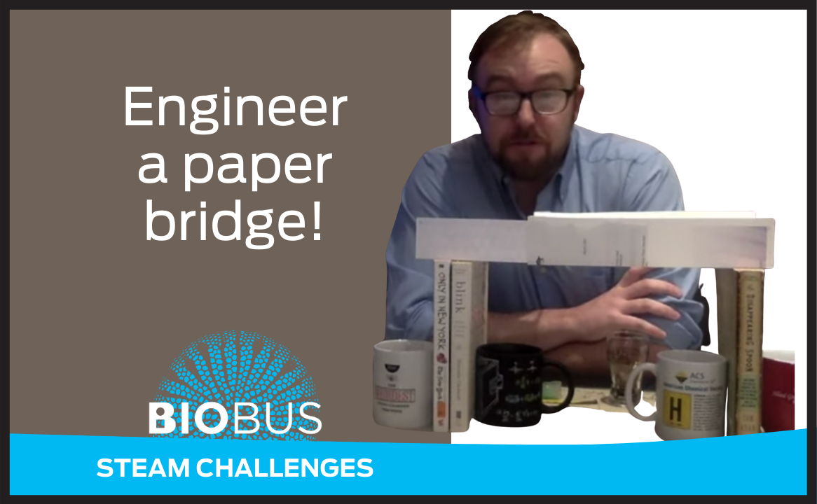 Engineer a paper bridge!