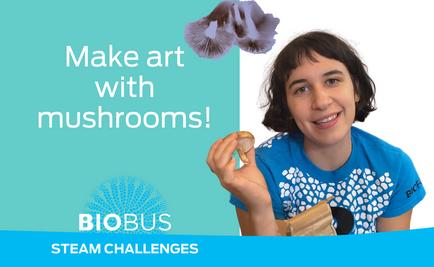 STEAM Challenge: Make art with mushrooms!