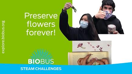 Preserve flowers forever!