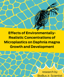Intern Research: Effects of Environmentally-Realistic Concentrations of Microplastics on Daphnia magna Growth and Development