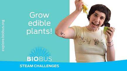 Grow edible plants!