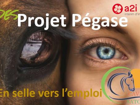 Projet Pégase, en selle vers l'emploi !