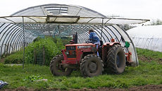 Jardins solidaires de kerbellec, vente aux pro