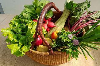 paniers de légumes bio.jpg