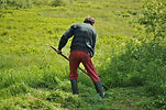 mowing-1532931_1920.jpg