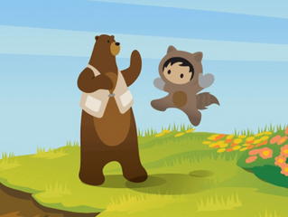 Salesforce for good
