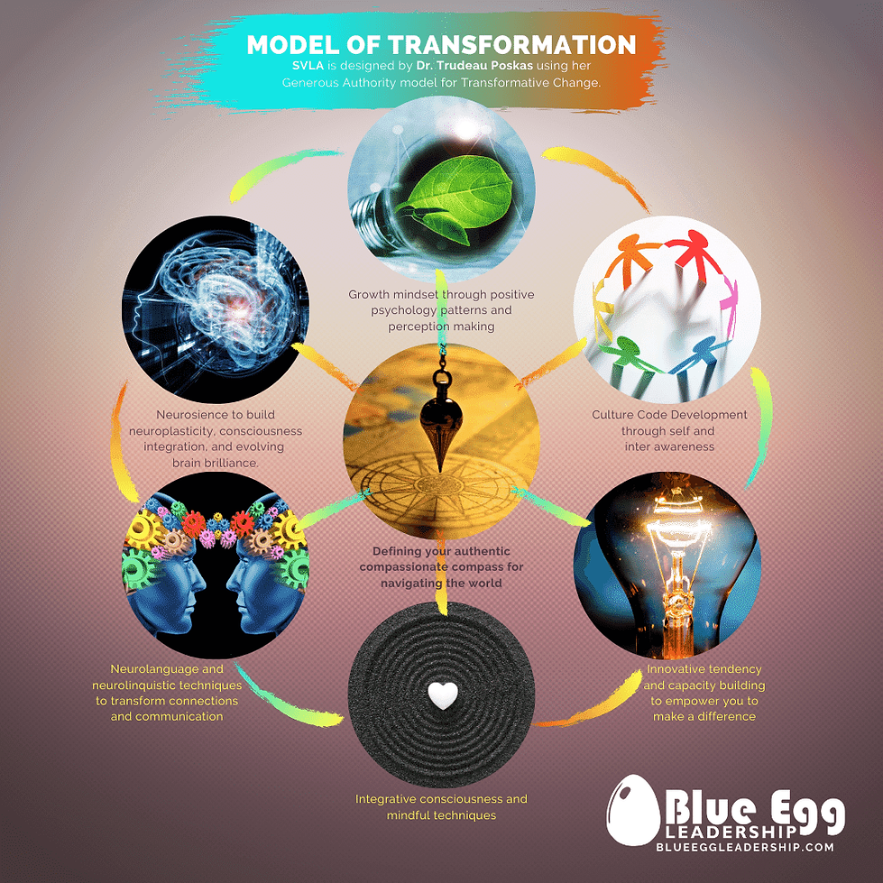 "Blue Egg Leadership's ""Model of Transformation"""