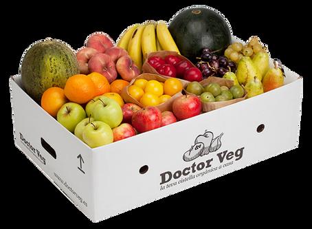 Doctor Veg, la cistella orgànica a casa