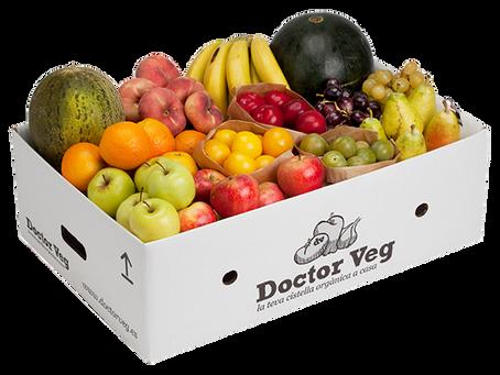 Doctor Veg