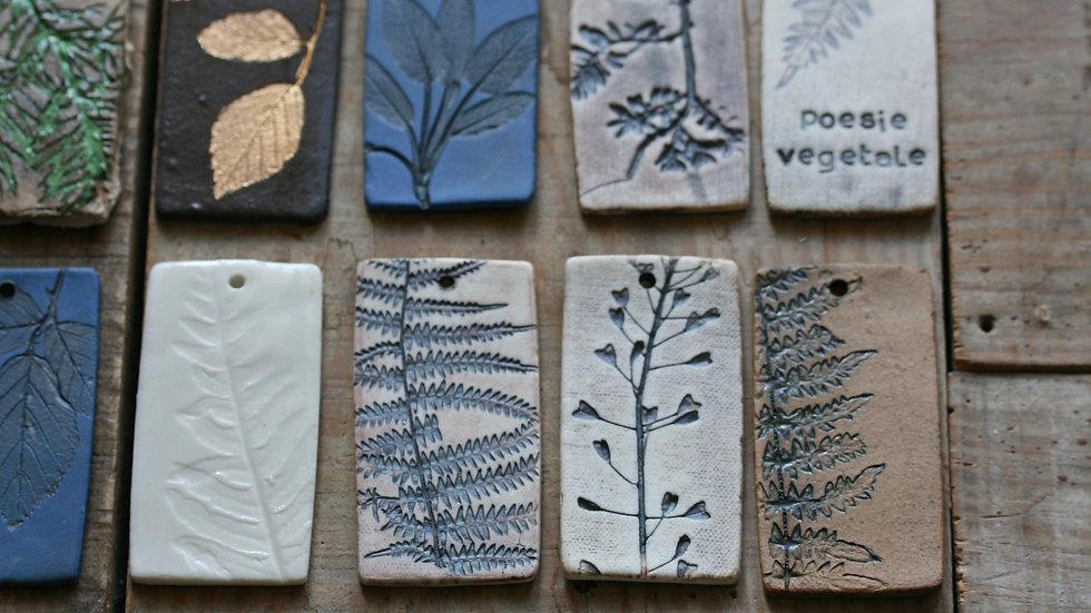 série 1 - TESSON échantillon en porcelaine herbier