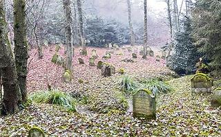 Jüdischer_Friedhof.jpg