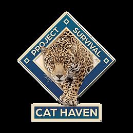 cat haven.png