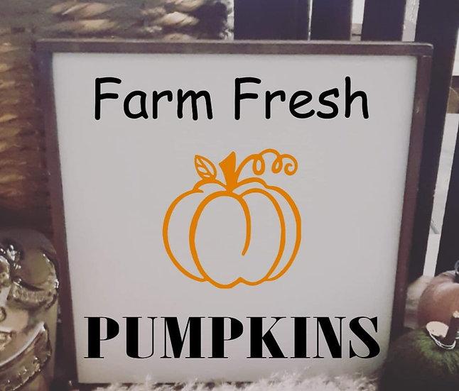 Farm fresh pumpkins (Kit 92)