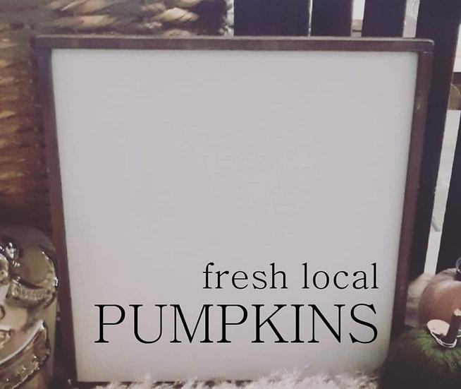 fresh local PUMPKINS (Kit 90)