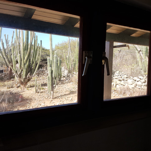 Outside View From Bathroom