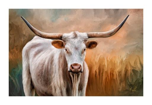 Texas by KariLou