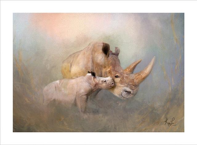Cuddle by KariLou