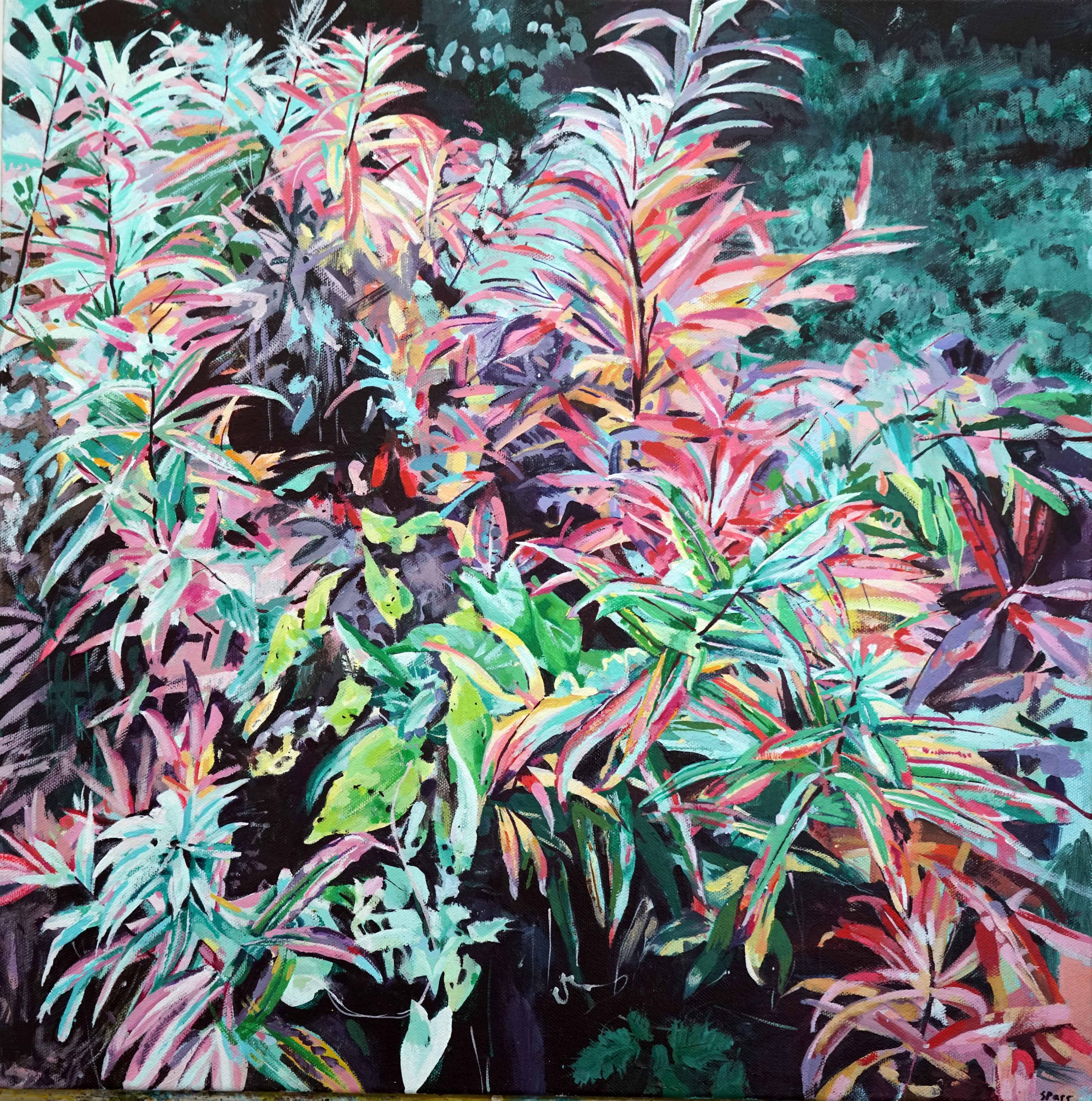 'Fireweed'