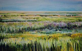 Cley Marsh, Norfolk(7).jpg