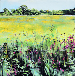 'Buttercups and Fireweed'