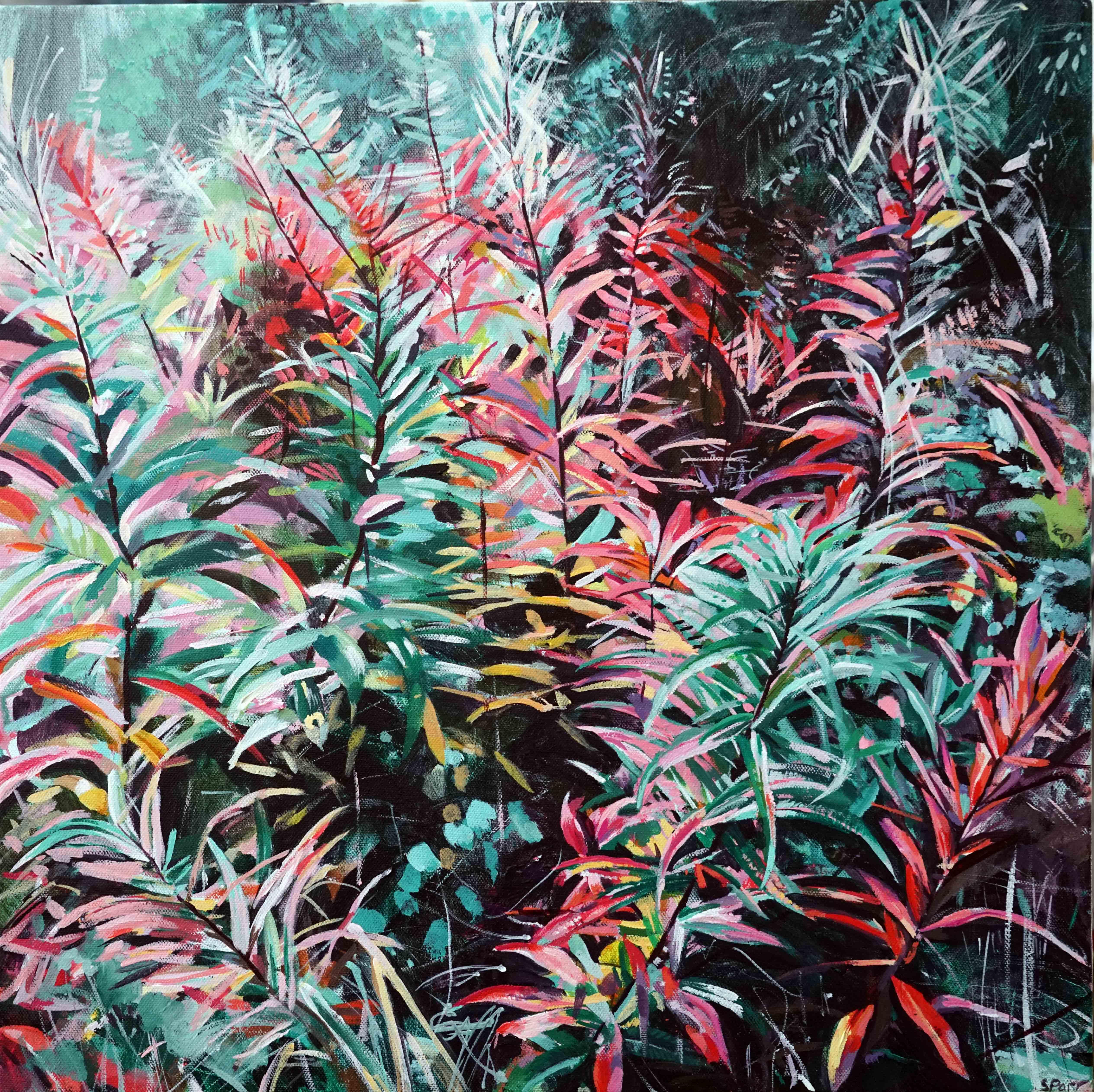 'Fireweed 2'