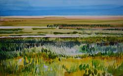 'Cley Marsh, Norfolk (1)'