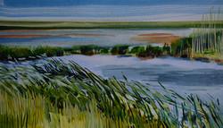 'Cley Marsh (6)'