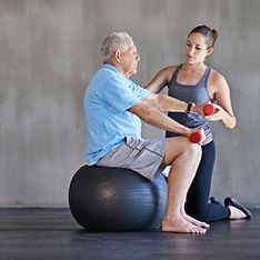 Fisioterapia idoso; quedas; fortalecimento