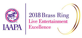2013-brass-ring-awards-live-entertainmen