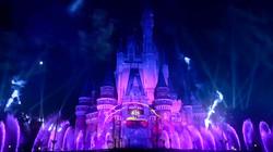 Celebrate! Tokyo Disneyland 02