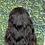 "Thumbnail: ""Rachel"" 13*4 frontal wig 150% density raw hair body wave 20"""