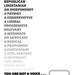 CFAD_Raise Your Voice_Posters22.jpg