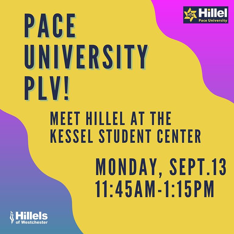 Say Hi at Pace University PLV