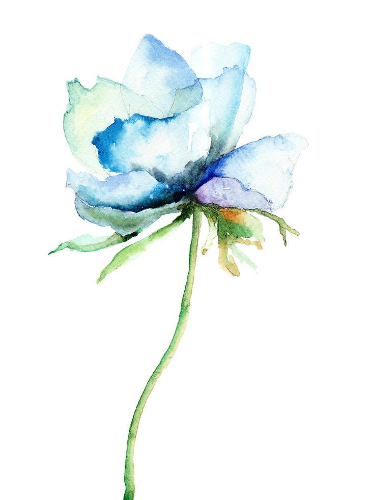 Blue Watercolor Flower - CORPAFLORA.jpg