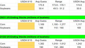 USDA Worksheet and Production Data for Brazil