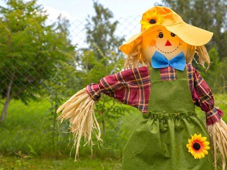 Scarecrow Making Contest/Concurso de Espantapájaros