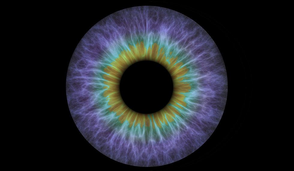 weo_eye_iris_logo_no_text_edited.jpg
