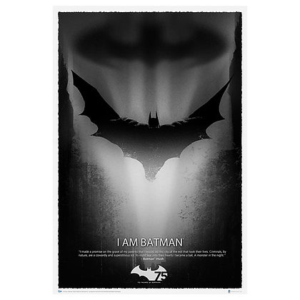 DC BATMAN 75TH ANNIVERSARY ART PRINT