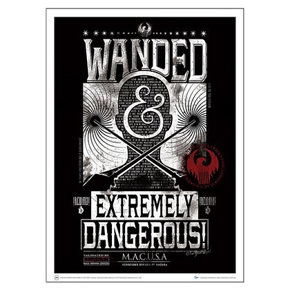 FANTASTIC BEASTS AND WHERE TO FIND THEM EXTREMELY DANGEROUS ART PRINT