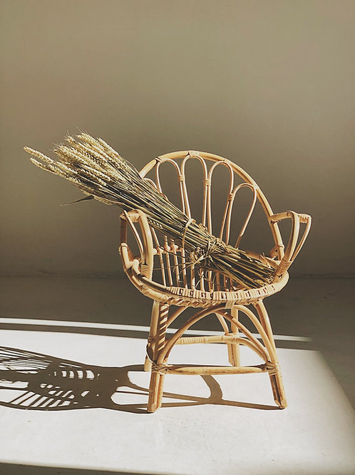 Bamboo Cane Chair