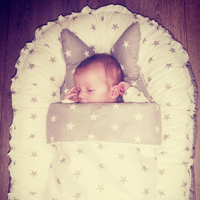 baby in lajlo nest